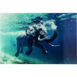 Swimming Elephant 180x120 cm glassbilde