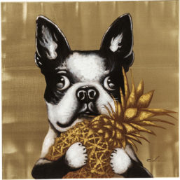 Picture Touched Dog with Pineapple