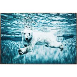 Glassbilde, Swimming Polar Bear