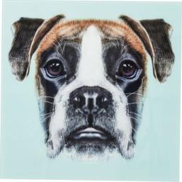 Glassbilde Dog Face 60x60cm