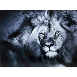 Glassbilde Lion King Lying 120x160cm