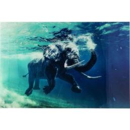 Glassbilde Swimming Elephant 80X100cm